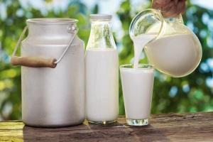 Срок хранения пастеризованного молока