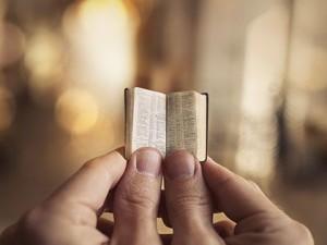 Как сдать печатный товар с браком?
