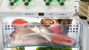Какую рыбу можно держать в холодильнике и морозильнике?