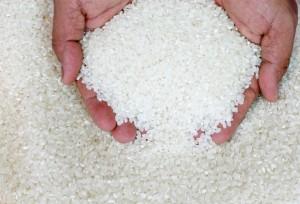 Как понять, что рис больше не пригоден к употреблению?